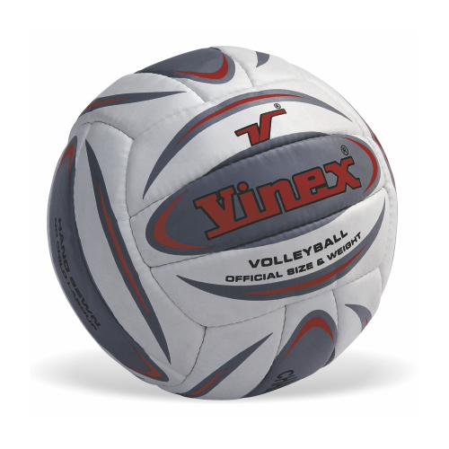 Vinex Volleyball - Champion